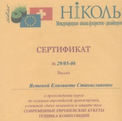 сертификат школы Николь, Елизавета Ястова