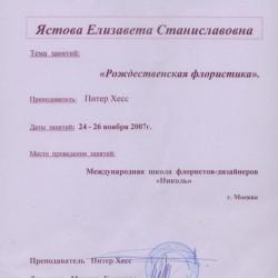 сертификат школы флористов Николь, рождественская флористика, Елизавета Ястова