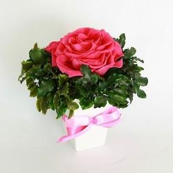 Стабилизированные цветы. Декоративная интерьерная композиция арт. STB2120