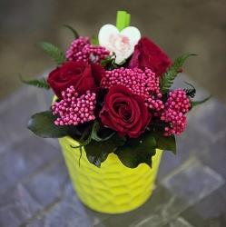 Стабилизированные цветы. Декоративная интерьерная композиция арт. STB2127