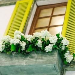 Кашпо с цветами на окне