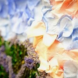 Цветочная картина из лепестков роз. Стабилизированные цветы гипоаллергенны и сохраняют свежесть на протяжении длительного времени