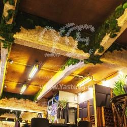 Зеленый мох на потолке