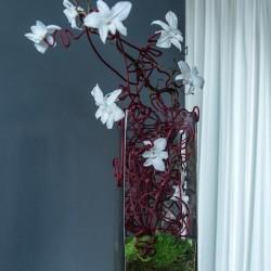 композиция стабилизированные цветы ресторан