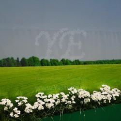 romashkovoe-pole-prodekspo-6