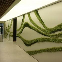 зеленый мох в офисе