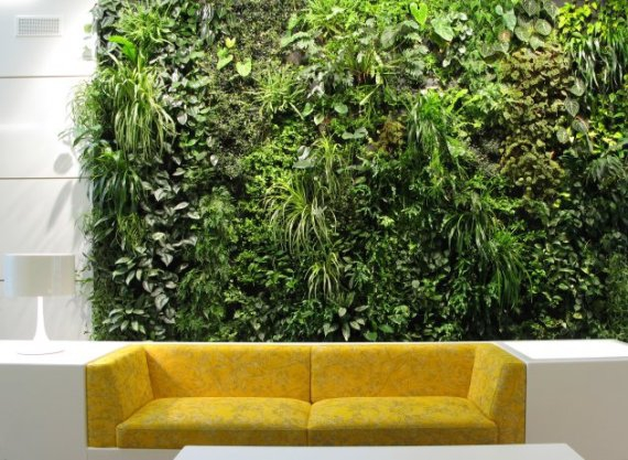 Зеленая стена в интерьере своими руками 94
